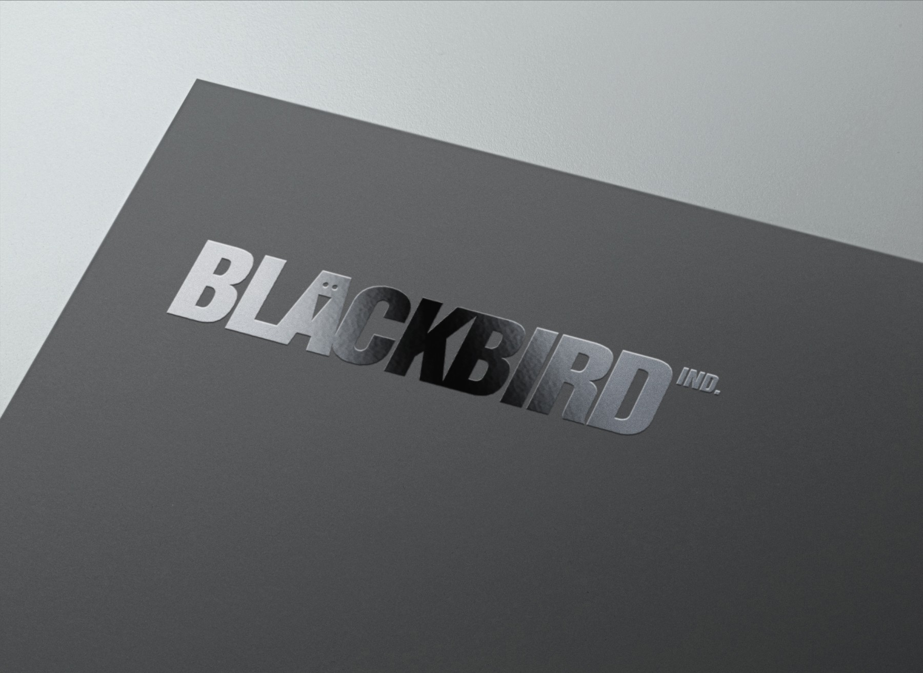 BLACKBIRD Ind. Bochum - Agentur, Kreativ, Content, Foto, Video, Design, Corporate, Business, Werbung